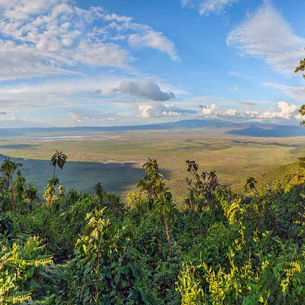 Samora-Explorers-ltd-ngorongoro